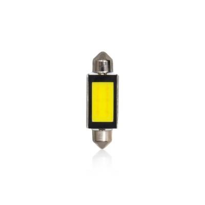 Light Bulbs Vecta Light Bulbs Automax